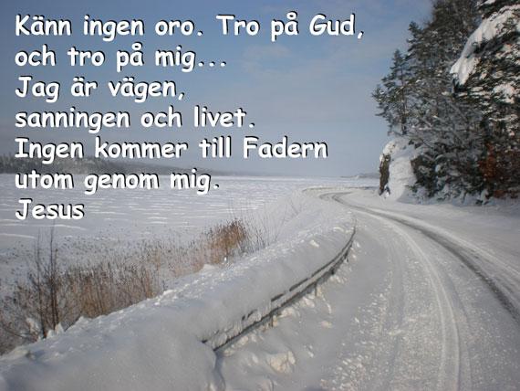 Avagen_570